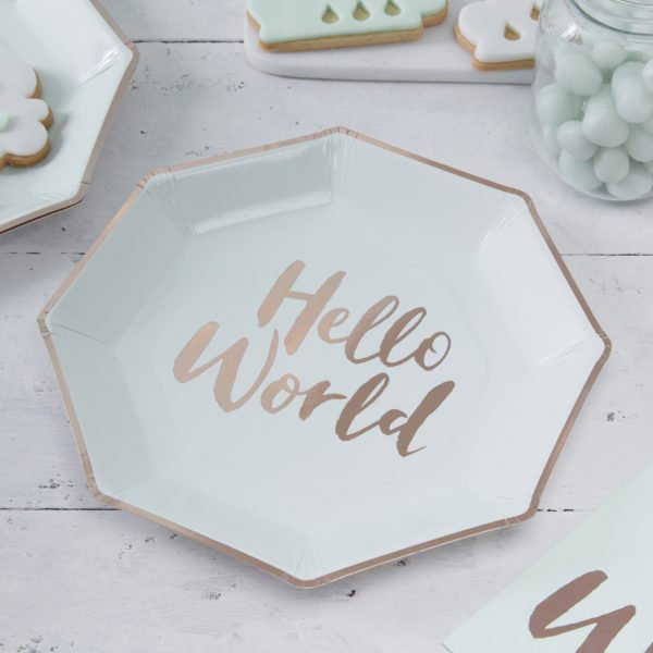 HW-801_Hello_World_Paper_Plate[1]